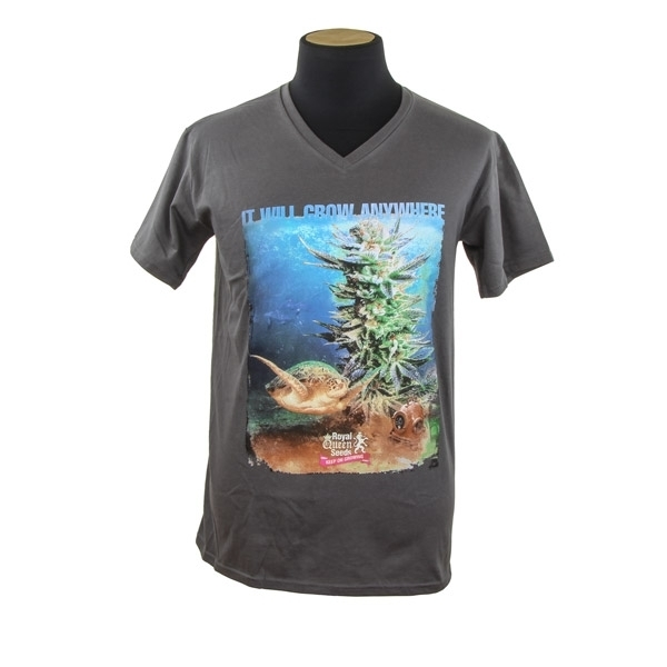 Royal Queen Seeds T-shirt Turtle