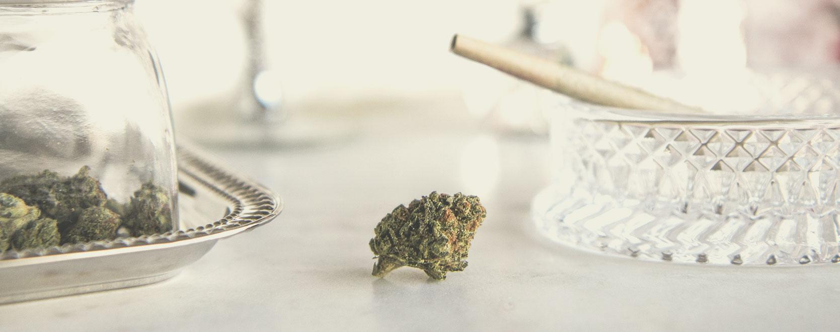 Så använder man cannabis ansvarsfullt