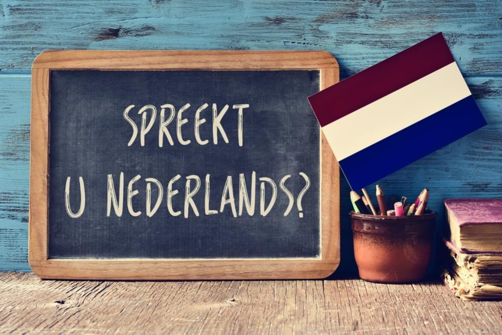 We Are Hiring A Dutch Translator!